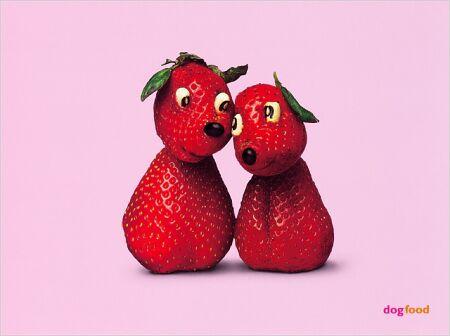 fraises1.jpg